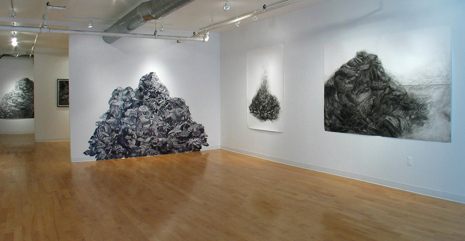 Debris (Installation View), 2007